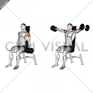 Dumbbell Seated Lateral Raise (version 2)