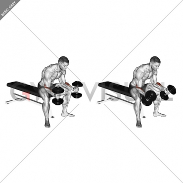 Dumbbell Seated Neutral Wrist Curl