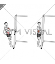 Bodyweight Standing Biceps Curl