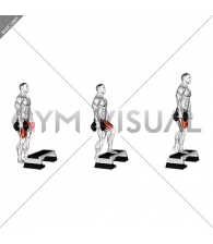 Dumbbell Single Leg Step Up