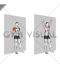 Shoulder Flexion Back to Wall
