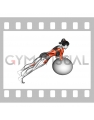 Stability Ball Rounded Rollout (female)