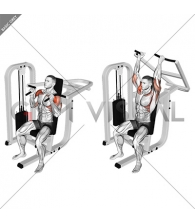 Lever Seated Hammer grip Shoulder Press