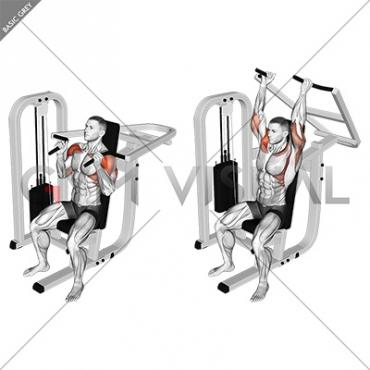 Lever Seated Hammer grip Shoulder Press
