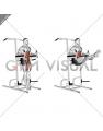 Captains Chair Straight Leg Raise