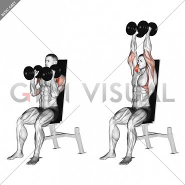 Dumbbell Seated Shoulder Press (parallel grip)