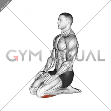 Seated Ankle Stretch