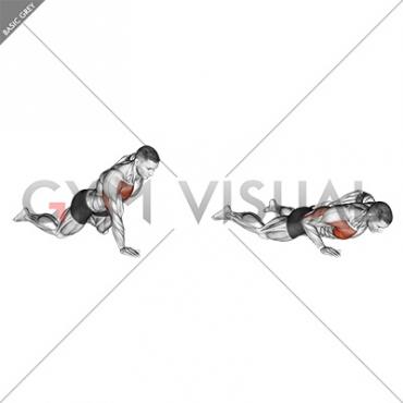Single Arm Push-up (on knees)