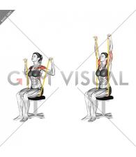 Resistance Band Seated Shoulder Press (female)