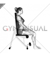 Static Position Seated Back with Pad (female)
