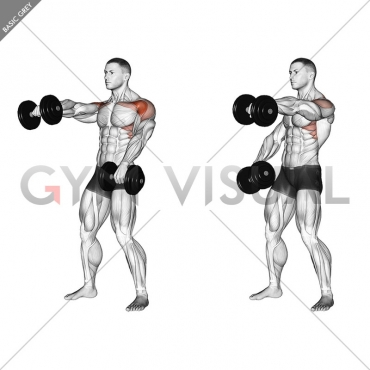Dumbbell Standing Alternate Raise