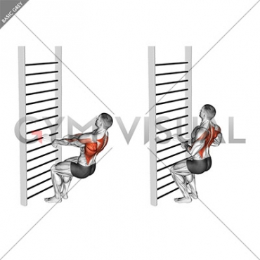Bodyweight Squatting Row (with towel)