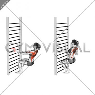 Bodyweight Squatting Row (with towel) (female)