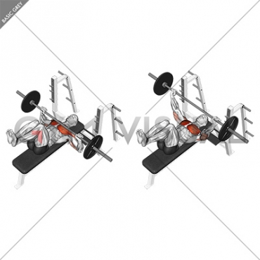 Barbell Bench Press (knees at 90 degrees)