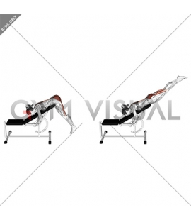 Incline Reverse Hyperextension