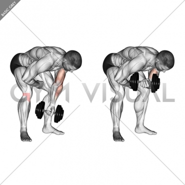 Dumbbell Standing One Arm Concentration Curl