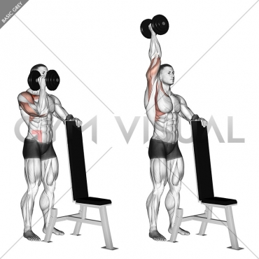 Dumbbell Standing One Arm Palm In Press