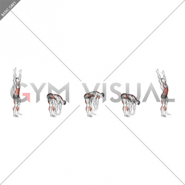 Two Toe Touch (male)