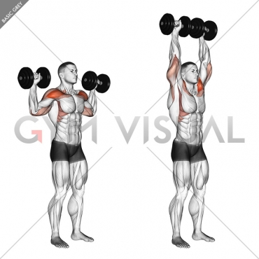 Dumbbell Standing Overhead Press