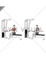 Cable Seated Supine-grip Row (male)
