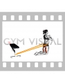 Resistance Band Hip Thrusts on Knees (female)