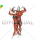 Bodybuilding pose male-female (VERSION 2)