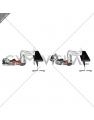Floor Crunch Feet on Bench (female)