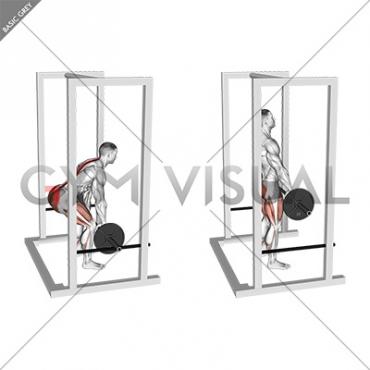 Barbell Rack Pull