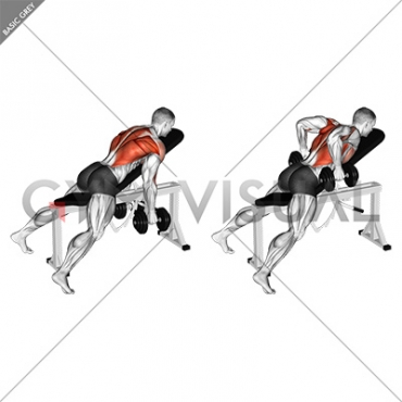 Dumbbell Hammer Grip Incline Bench Two Arm Row