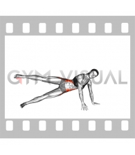 Side Plank Leg raise (female)