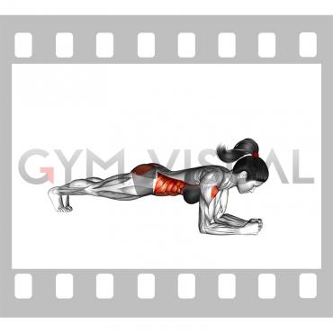 Elbow Push up (female)