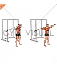 Band Alternate Incline Chest Press with Twist