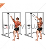 Band Alternate Lat Pulldown with Twist