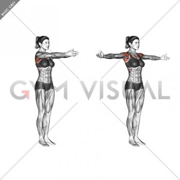 Dynamic Chest Stretch