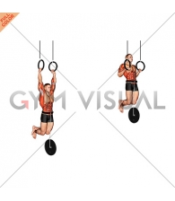 Weighted Muscle up