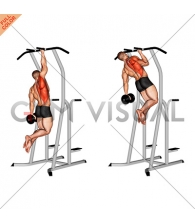 Weighted One Hand Pull up