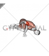 Frog planche