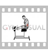 Roman Chair Sit-Up