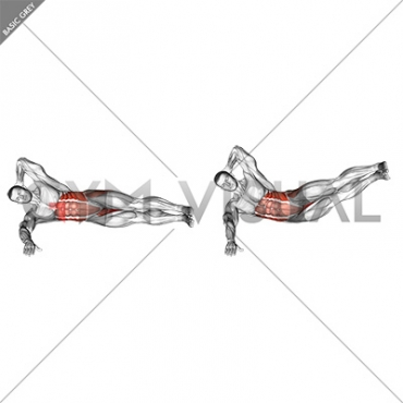 Oblique Crunches with Straight Leg Lift