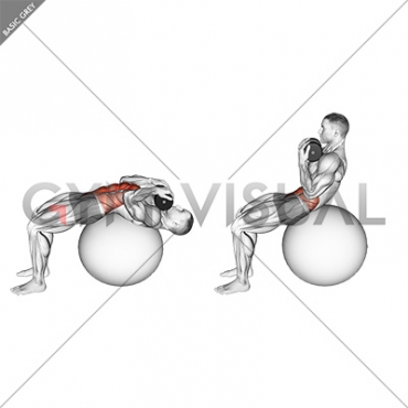 Weighted Stability Ball Crunch (Full range)