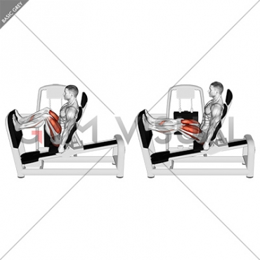 Lever Seated Leg Press (VERSION 2)