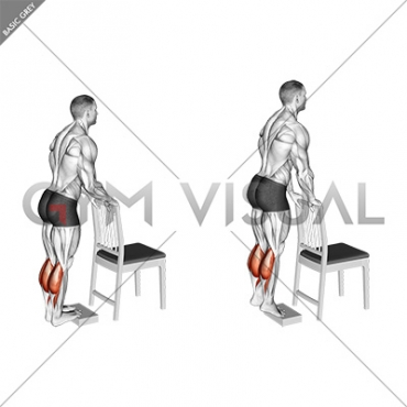 Calf Raise from Deficit with Chair Supported
