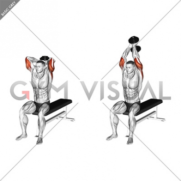 Dumbbell Seated Bench Extension