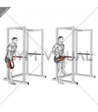 Weighted Single Leg Lift