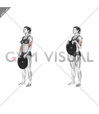 Weighted Standing Curl (female)