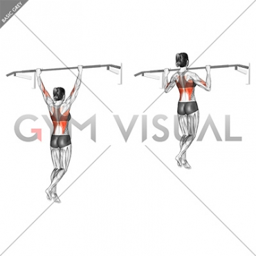 Wide Grip Pull Up (female)