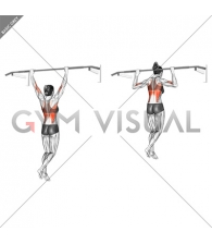Wide Grip Rear Pull Up (female)
