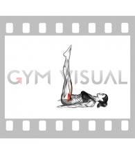 Lying Hip Straight Leg Raise (female)