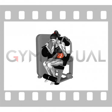 Lever Seated Crunch (female)