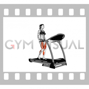 Walking on Treadmill (female)
